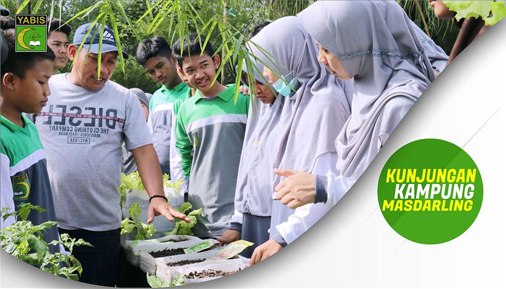 Belajar Budidaya Sayur Organik di Kampung Masdarling